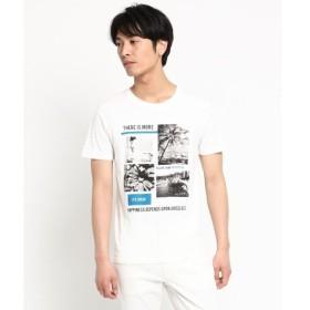 THE SHOP TK / ザ ショップ ティーケー フォトプリント 半袖Tシャツ