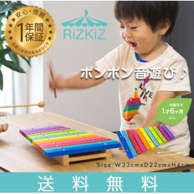 910747de93a91 木琴 楽器 子供 シロフォン 12鍵盤 知育玩具 子供用楽器 マレット バチ 2本付