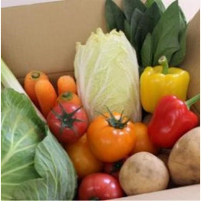 合志の旬のお野菜セット(10~12品)