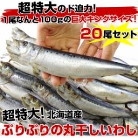送料無料 北海道産 超特大いわし丸干し 巨大キングサイズ 20尾セット 2キロ(1尾100g以上×20尾)