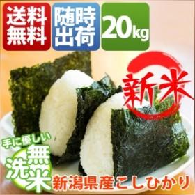 無洗米 20kg 送料無料 コシヒカリ 5kg×4袋 新潟県産 30年産 1等米 特A 米 20キロ お米 クーポン対象