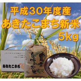 米 5kg 白米 送料無料 大仙 大曲 秋田県産 新米 あきたこまち 平成30年度産 5kg