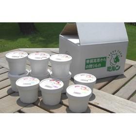 脊振高原牧場手作りアイスクリームセット