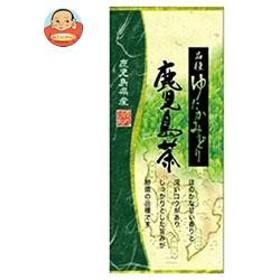 【送料無料】 山城物産  鹿児島茶 品種ゆたかみどり  100g×20袋入