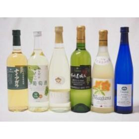 甘口白ワイン6本セット(ナイアガラ 遅摘み白 完熟ナイアガラ からだにやさしい白葡萄酒 ナイアガラ甘口白ワイン 梅ワイン)ギフト のし可