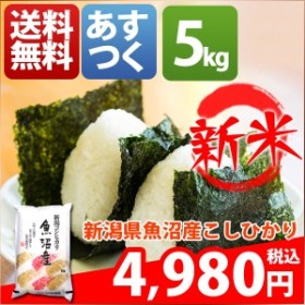 米 5キロ 送料無料 白米 コシヒカリ 新潟県魚沼産 30年産 1等米 特A お米 5kg 安い クーポン対象