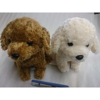 スターチャイルド ぬいぐるみ トイプードル 高さ17cm(送料無料)(イヌ、いぬ、犬、ドッグ、人形、玩具、おもちゃ、ぬいぐるみ