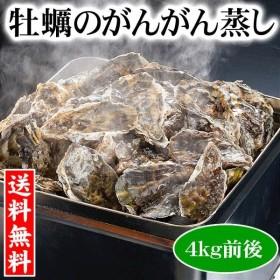 (送料無料)牡蠣のがんがん蒸し 4kg前後(小型)殻付き 生牡蠣 北海道産 お土産 お取り寄せ グルメ カキ
