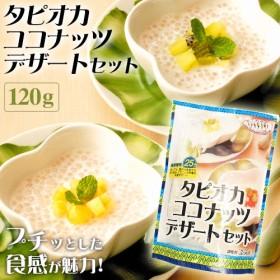[アライド] タイの台所 タピオカココナッツ デザートセット 120g
