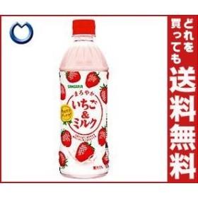 【送料無料】 サンガリア まろやかいちご&ミルク 500mlペットボトル×24本入 ※北海道・沖縄・離島は別途送料が必要。