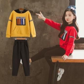子供服上下セット ファッション スウェット 長袖 部屋着 2色 120cm-160cm ジュニア キッズ 衣装 通園通学 女の子2点セットアップ 運動 カ