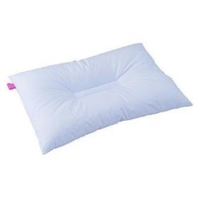 枕 ピロー 枕 洗濯できる 抗菌・消臭 消臭マイスター 洗えるパイプまくら  ハルカスタイル HSF-P405