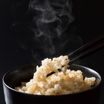 タイワアグリ 新米!平成30年度富山県産有機JAS認証コシヒカリ タイワ米玄米 5kg
