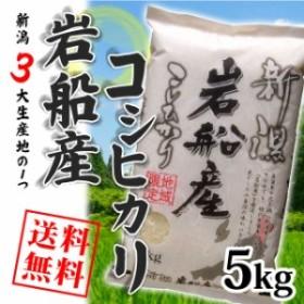 【8月17日以降お届け】岩船産コシヒカリ 5kg (5キロ×1袋) 送料無料 沖縄へは別途送料 お米 5kg 安い 米 5キロ 送料無料 産地直送 平成