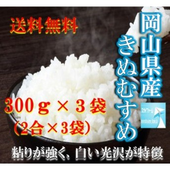 ポイント消化 送料無料 300g 食品 お米 お試し きぬむすめ300g×3袋(2合×3袋) 1kg以下 メール便