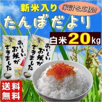 米 20kg お米 白米 安い (10kg×2袋) 訳あり ブレンド米 国内産 送料無料 『たんぼだより(白米10kg×2)』
