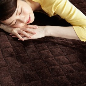 ベルーナインテリア あったか敷パッド・枕パッド<吸湿発熱・蓄熱> ブラウン 枕パッド2枚組