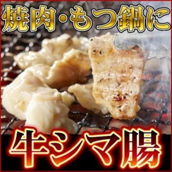 牛ホルモン シマチョウ 大腸 500gパック メキシコ産 テッチャン 焼肉 もつ鍋 BBQ
