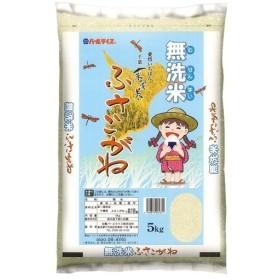 平成30年産 無洗米 千葉県産ふさこがね ( 5kg )/ パールライス