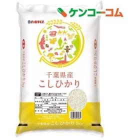 平成30年産 千葉県産コシヒカリ ( 5kg )/ パールライス