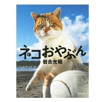 ネコおやぶん/岩合光昭