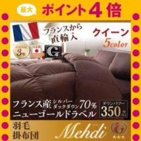 日本製防カビ消臭フランス産 ダックダウン ニューゴールドラベル 羽毛掛布団【Mehdi】メディ クイーン[00]