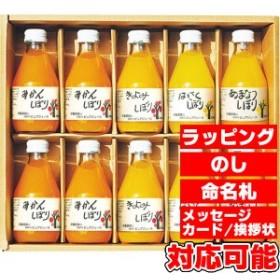 伊藤農園 100%ピュアジュース10本ギフトセット (50710g)