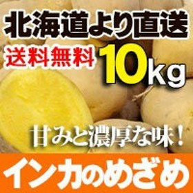 インカのめざめ 10kgセット 北海道産  煮崩れ少なく甘みのある小ぶり