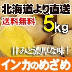 インカのめざめ 5kgセット 北海道産 小ぶりなじゃがいも 送料無料