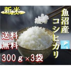 ポイント消化 送料無料 300g×3袋 食品 米 お試し 令和元年 魚沼コシヒカリ300g×3袋 1kg未満 こしひかり 代金引換不可
