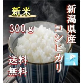 新米 ポイント消化 送料無料 300 食品 米 お試し 令和元年産 新潟県産コシヒカリ300g 1kg未満 こしひかり 代金引換不可