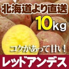 レッドアンデス 10kg 北海道産 ジャガイモ 送料無料 贈り物 内祝 お返し ギフト