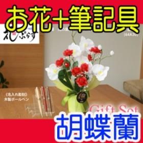 【 名入れ 】花 ぷらす 《 木製ボールペン 》 ブライト胡蝶蘭 64A30-mokupen ギフトセット   ギフト