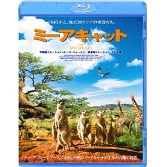 ミーアキャット Blu-ray(Bluray Disc)