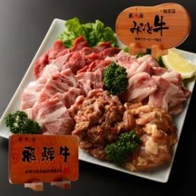 焼き肉セット 黒毛和牛 3-5人前 1kg バーベキュー BBQ 焼肉セット 飛騨牛 カルビ 赤身 ロース 鶏肉 岐阜県