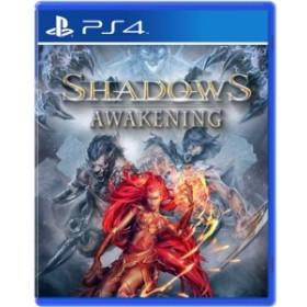 【即納★新品】PS4 Shadows Awakening(アジア版)