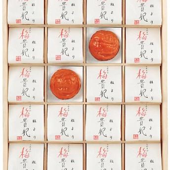 【送料無料】 【676503】〈梅の丸長〉紀州南高梅「粒より梅貴妃」 【三越・伊勢丹/公式】