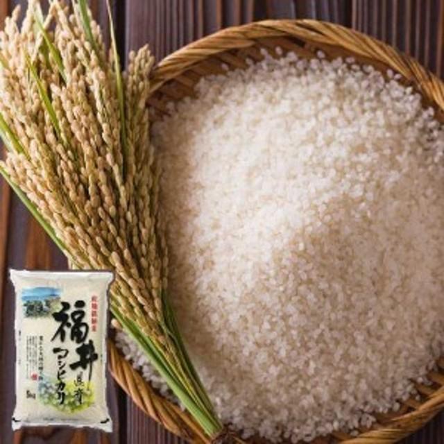 福井県産 こしひかり5kg 【水仙】[ ポイント2倍 ] おコメ 米 5kg コシヒカリ
