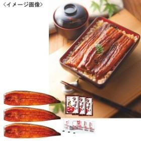 山道養鰻場のうなぎ蒲焼(長焼)3尾食品 魚介類 シーフード