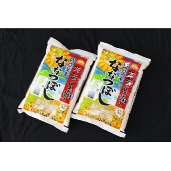 【お米10㎏】 ななつぼし 低農薬米