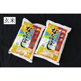 【玄米10㎏】 ななつぼし 低農薬米