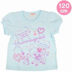 ハミングミント 速乾Tシャツ ブルー 120cm☆サンリオ 子供キッズサマー衣料シリーズ クロネコDM便可big_la