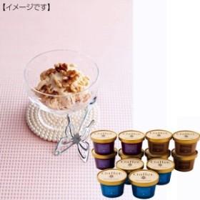 アイスクリーム ガレー プレミアム セットバニラ チョコ キャラメル