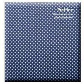 ナカバヤシ Digio デジタルフリーアルバム「プラフィーネ」デミサイズ/ブルー ア-DP-144-B