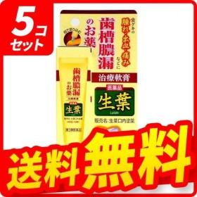 生葉口内塗薬 20g 5個セット  第3類医薬品