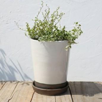 植木鉢 陶器鉢 白 ベトナム産 6号 受け皿付き