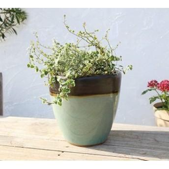 植木鉢 陶器鉢 おしゃれ エッグポット レイクグリーン AP-005CLGR Sサイズ