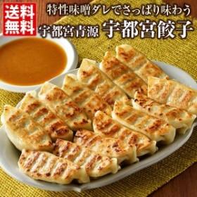 宇都宮 餃子 青源 送料無料 45個(15個×3箱)みそダレで味わう宇都宮餃子