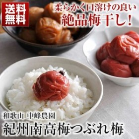 紀州南高梅 つぶれ梅(1.6kg) 送料無料 梅干し 訳あり はちみつ しそ漬 ご飯のお供 梅