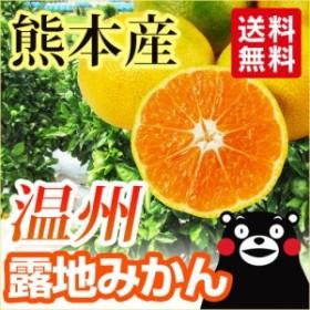 【 送料無料 】熊本産 温州 露地 みかん 5kg 【 九州 熊本 極早生 早生 中生 晩生 ミカン 柑橘 ギフト 】
